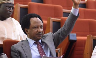 Hilarious reactions trail Shehu Sani's demand for face, name, of Italian with coronavirus