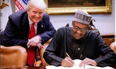 Buhari Trump