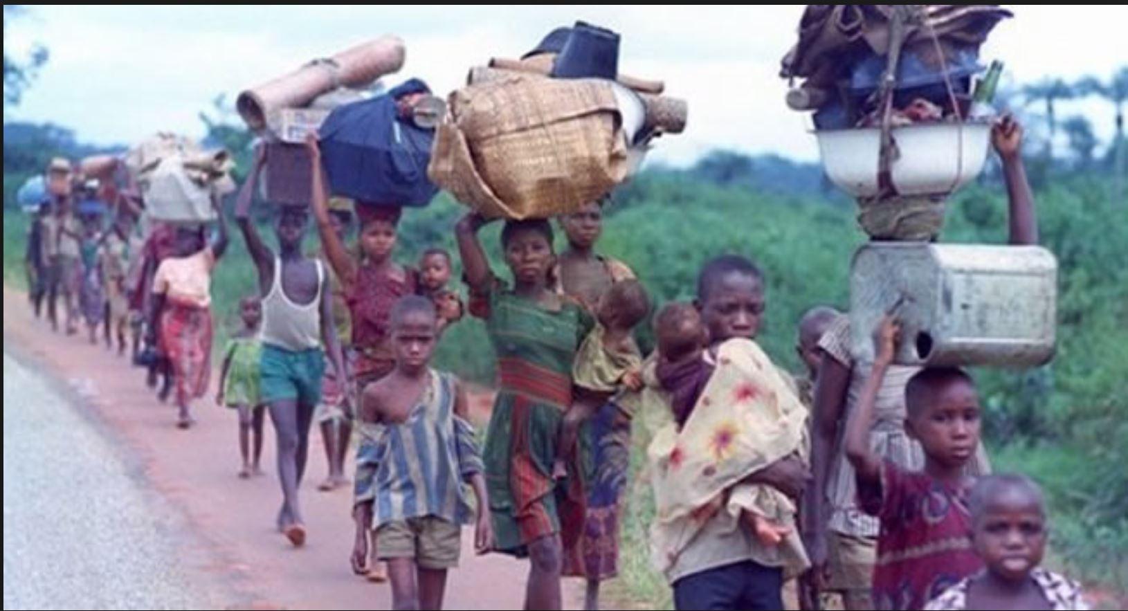 Niger Republic to return 130,000 Nigerian refugees in December