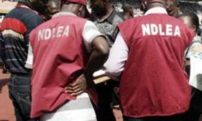 Lagos NDLEA Drug Abuse