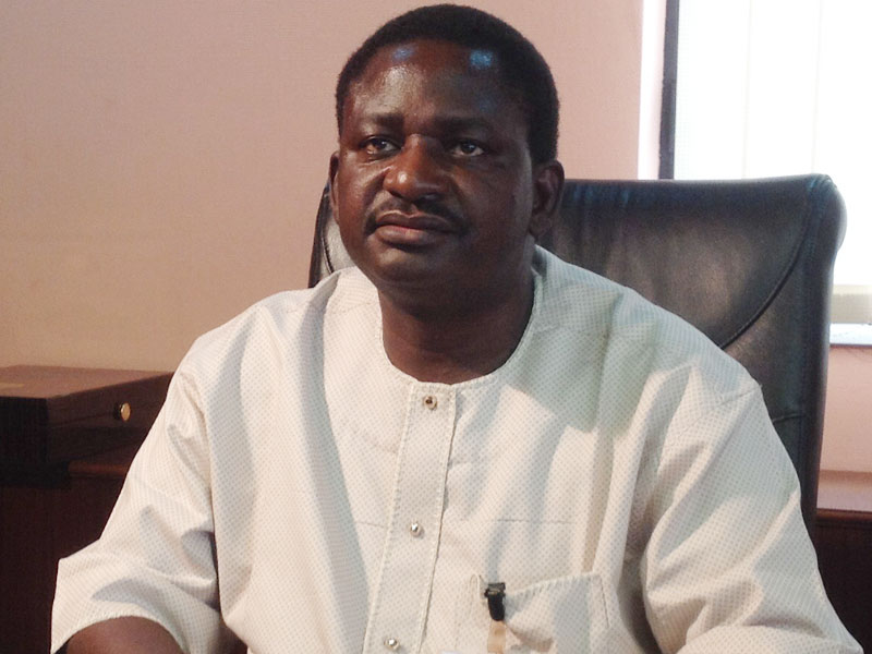 Enemy of the state by Femi Adesina
