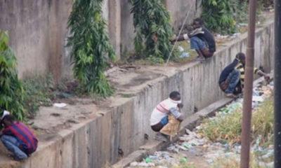 toilets open defecation