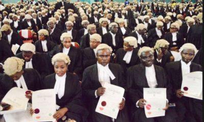 Law school students final exam