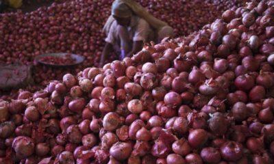 CCTV onions