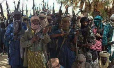 Zamfara bandits kill popular twin brothers, lost four people