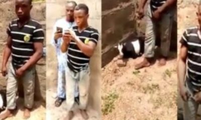 Man busted raping a Goat (Video)