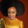 Chimamanda Adichie wins in court after accusation of plagiarism against her 'Half of a yellow sun'
