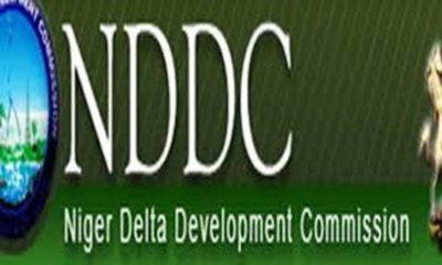 Niger Delta Development Commission