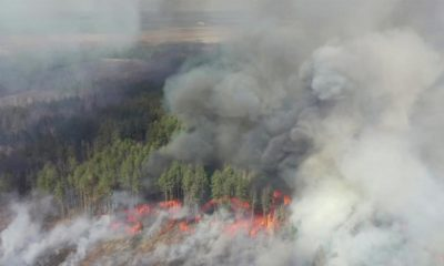 Ukraine: Chernobyl Forest fires under control after week-long battle