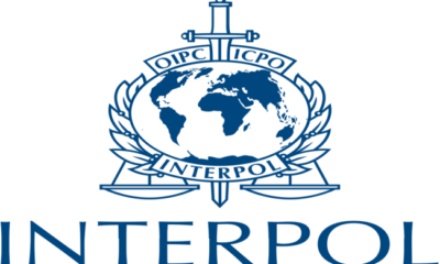 Interpol exposes €1.5m face masks fraud traced to Nigeria