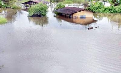 Kaduna: Rainstorm destroys 271 houses