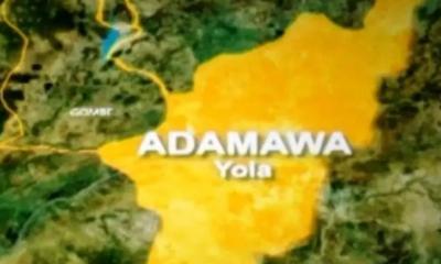 Adamawa locks down two councils over violence