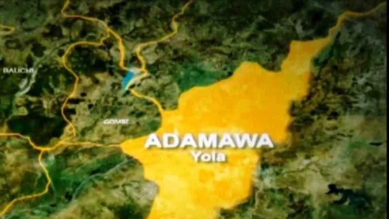 Adamawa school feeding promme