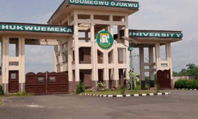 native medicine, Anambra State, Mr Willie ObianoChukwuemeka Odumegwu Ojukwu University,