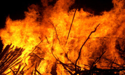 Popular Okobaba sawmill gutted by fire in Ebute Metta