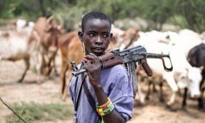 Ohanaeze youths, Ohaneze Ndigbo, 332 Fulani camps