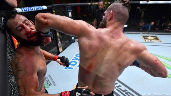 Prochazka Reyes UFC