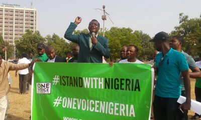 pro- Buhari groups