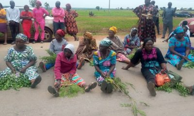 Bandits didn't kill or rape any of abducted Baptist students - CAN