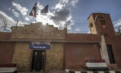 24 Muslim Brotherhood members bag death sentence